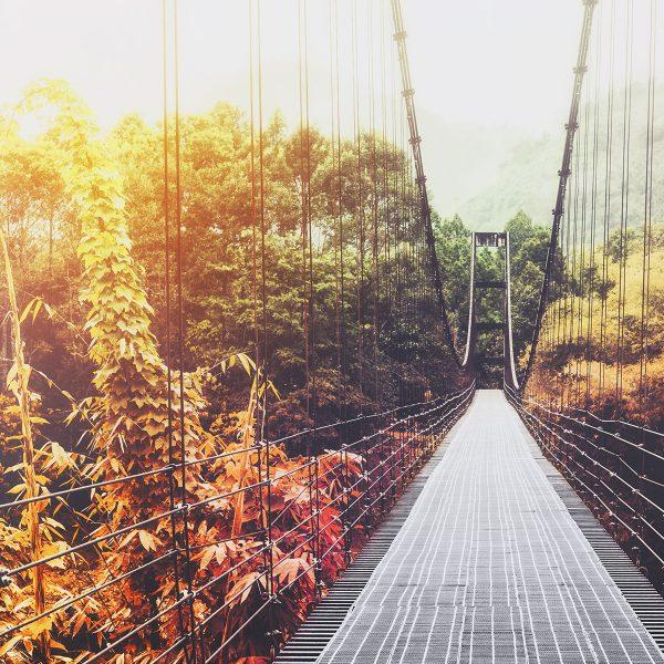 Puente peatonal colgante.
